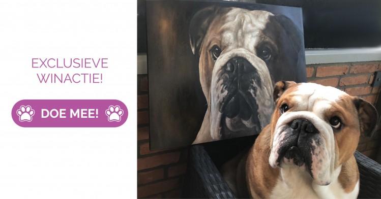Win: kunstwerk t.w.v. 375 euro van jouw huisdier!