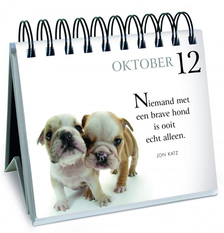 Win een exemplaar van<br> '365 dagen met mijn trouwe hond'